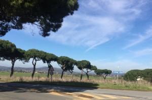Il panorama da la Selva, Capalbio, Maremma