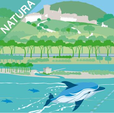 Capalbio nel Santuario dei cetacei.
